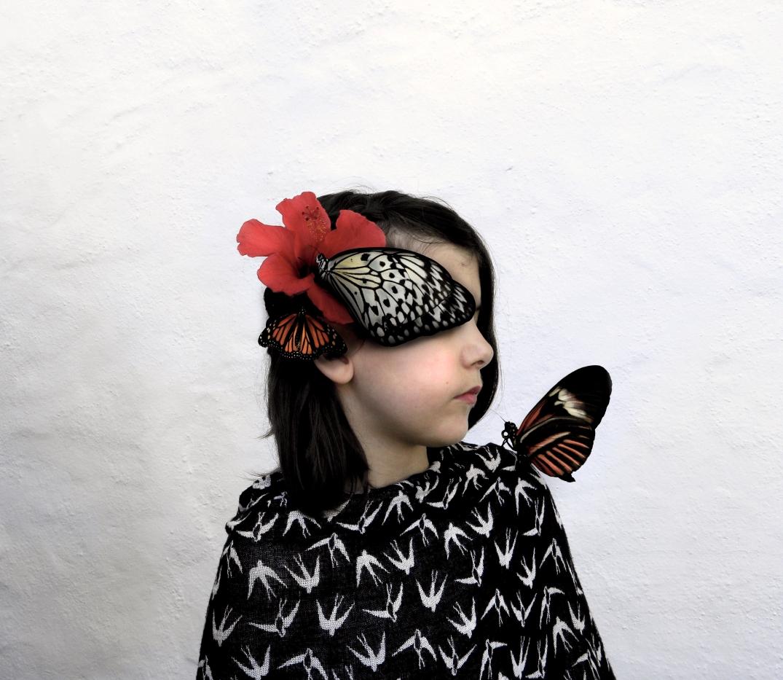 Alba farfalla